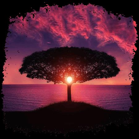 Baum des Lebens vor rosarotem Himmel - Neverrace Gaia